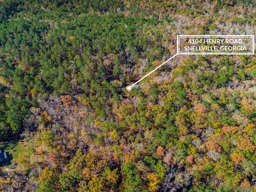 Land Lovers Paradise : Snellville : Gwinnett County : Georgia