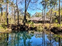 Stunning Estate And Land, Spring : Crawfordville : Wakulla County : Florida