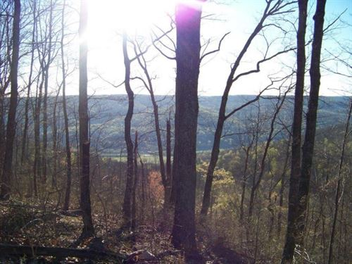 52.54+/- Acres With Panoramic Views : South Pittsburg : Marion County : Tennessee