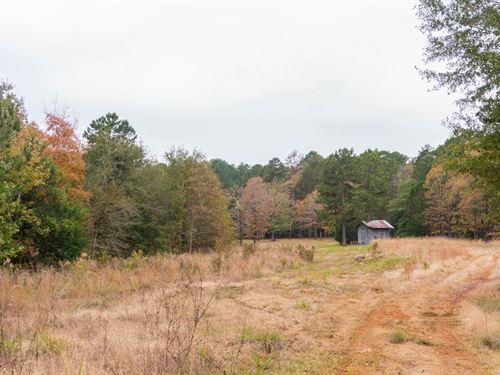 Countryside Homestead Retreat : Nacogdoches : Texas