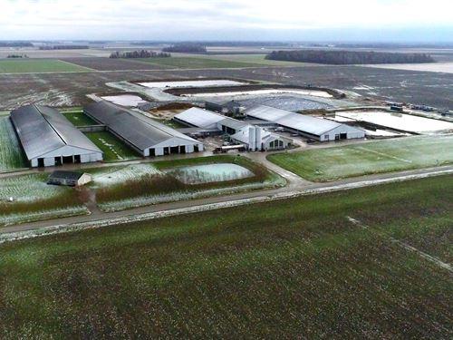 Ohio Dairy Auction : Continental : Putnam County : Ohio