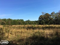 Reids Creek Woodlands And Fields : Abbeville : Abbeville County : South Carolina