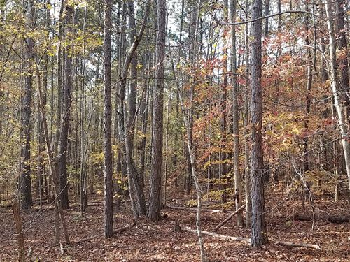 17.5+/- Acres Ranburne : Heflin : Cleburne County : Alabama