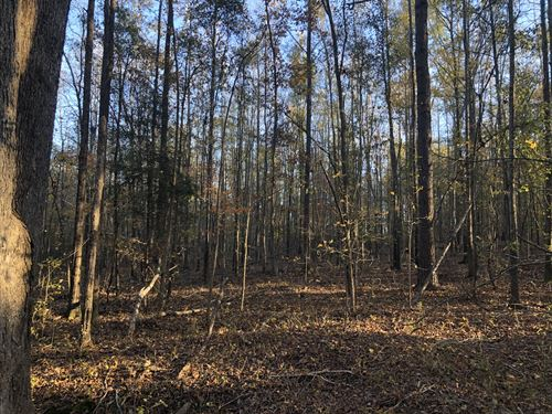 Industrial/ Commercial Tract : Honea Path : Anderson County : South Carolina
