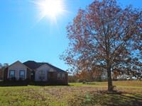 Hobby Farm & Equine Property In Mo : Ava : Douglas County : Missouri