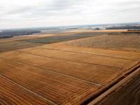 240 Acre Farm With 160 Acres of pr : Clarendon : Monroe County : Arkansas