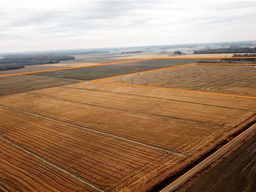 240 Acre Farm With 160 Acres of pr : Clarendon : Monroe County : Arkansas