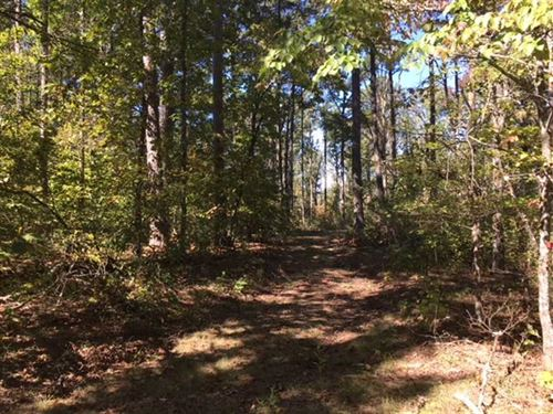 80 Acres Surrounded by Ozark : Ozark : Franklin County : Arkansas