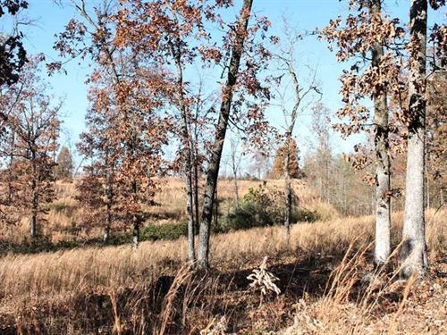 12 Acres For Sale in Ripley County : Doniphan : Ripley County : Missouri