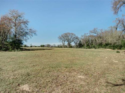 31 Acres in NE Brazos County : Bryan : Brazos County : Texas