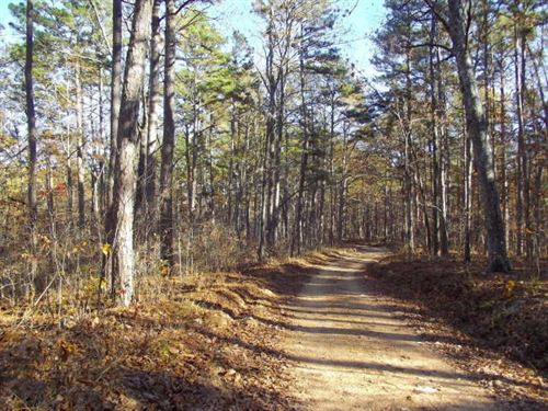 Land in National Forrest For Sale : Alton : Oregon County : Missouri