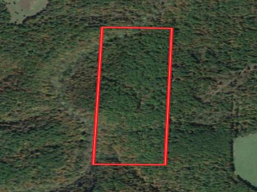 Wooded Acreage in West Plains, MO : West Plains : Howell County : Missouri