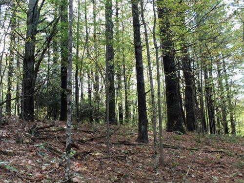 20.57 Acres Land Carroll County : Fancy Gap : Carroll County : Virginia
