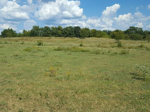 Kiamichi Ranch Land For Sale : Talihina : Pushmataha County : Oklahoma