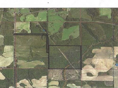 Hunting Tract : Columbia : Houston County : Alabama