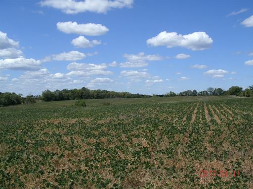 20 Country Acres With Tillable : Mercer : Missouri