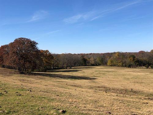 Close To 50 East Texas Acres : Winnsboro : Hopkins County : Texas