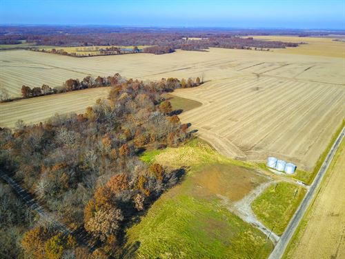 Fayette County 289 Acre Farm : Ramsey : Fayette County : Illinois