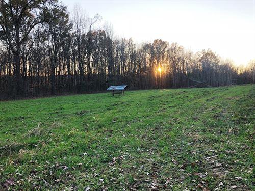 Westfork 22 : Mannington : Christian County : Kentucky