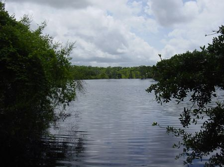 Winquepin Plantation : Madison : Madison County : Florida