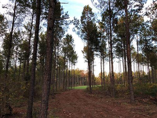 28+/- Acres Near Lagrange : Five Points : Chambers County : Alabama