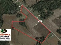 33 Acres of Farm And Pasture Land : Fairmont : Robeson County : North Carolina