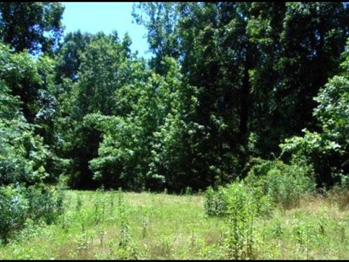 145 Acres In Yazoo County In Yazoo : Yazoo City : Yazoo County : Mississippi