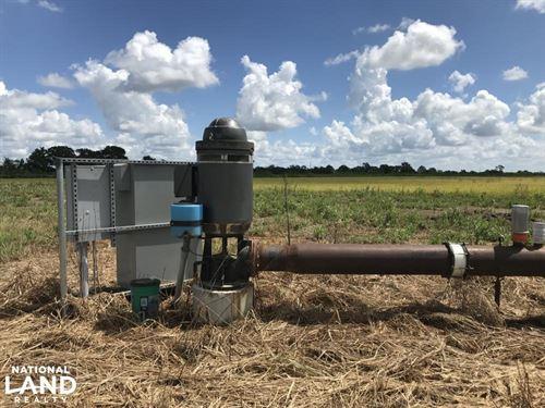 Good Swla Rice And Crawfish Farm : Kinder : Jefferson Davis Parish : Louisiana