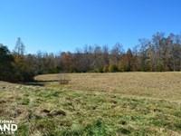 Twin Creek Farms : Chelsea : Shelby County : Alabama