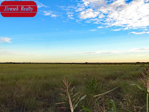 8.26 Ac, Cr 418, Thorndale : Thorndale : Milam County : Texas