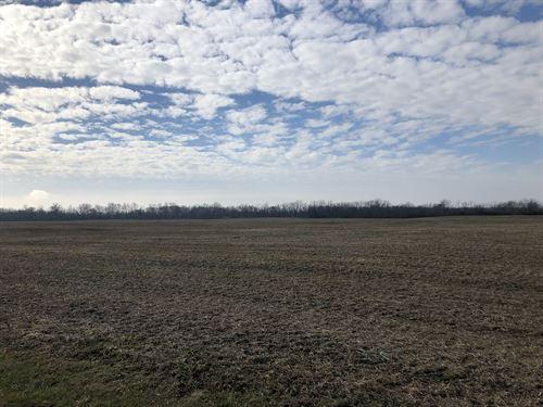Ohio Land Auction : Camden : Preble County : Ohio