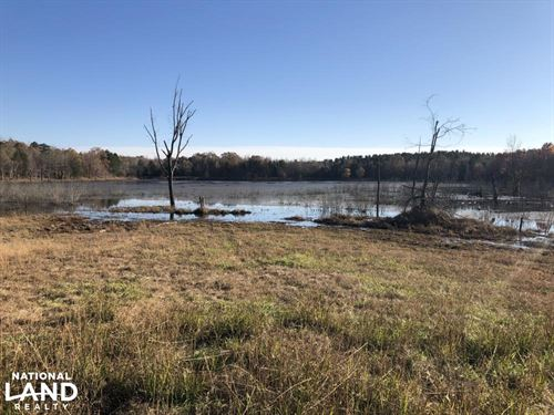 Yalobusha County Lake And Timber : Coffeeville : Yalobusha County : Mississippi