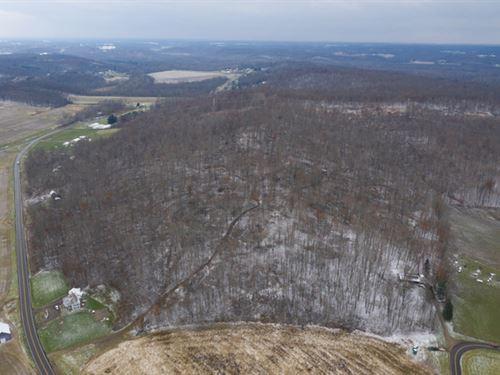 Black Run Rd, 63 Acres : Nashport : Muskingum County : Ohio