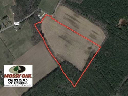 30 Acres of Farm Land For Sale in : Greenbush : Accomack County : Virginia