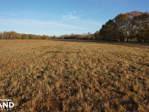 Lower Hull Road Pasture Land : Moundville : Tuscaloosa County : Alabama