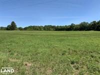 Ramsey Road Farm Tract : Grand Bay : Mobile County : Alabama
