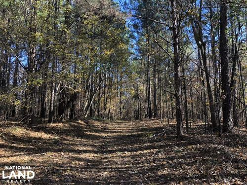 Enid Lake Hunting And Timber Invest : Oakland : Yalobusha County : Mississippi