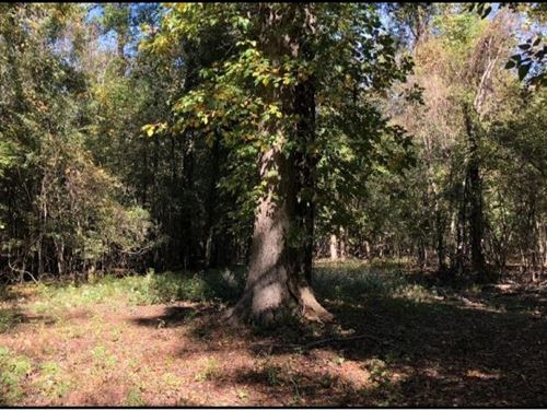 55.8 Acres In Sharkey County In Rol : Rolling Fork : Sharkey County : Mississippi