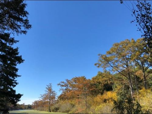 31.0 Acres In Issaquena County In : Mayersville : Issaquena County : Mississippi