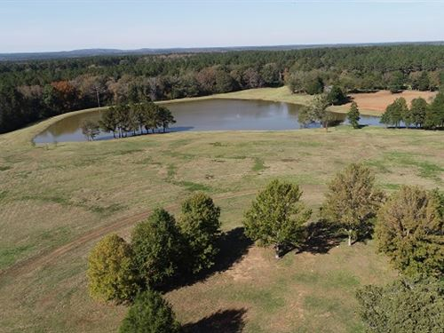 492.4 Ac At 1365 Pine Lake Rd : West Point : Harris County : Georgia