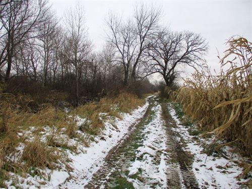80 Ac Prime Farmland, Dodge Co, Wi : Chester : Dodge County : Wisconsin