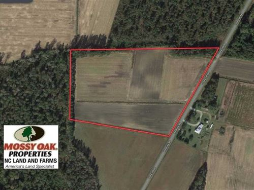 17.6 Acres of Farm Land For Sale : Hallsboro : Columbus County : North Carolina