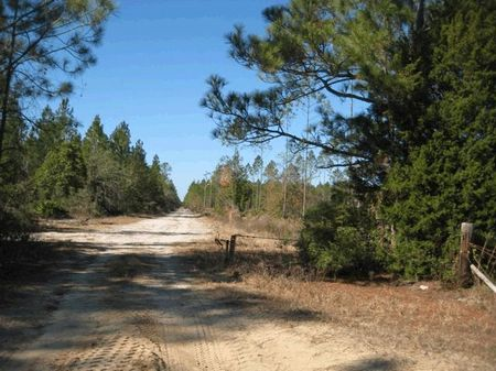 Excellent Location : Middleburg : Clay County : Florida