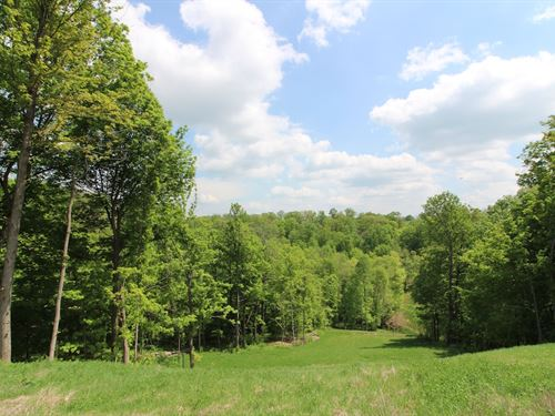Tiber Rd, 26 Acres : Jacobsburg : Belmont County : Ohio