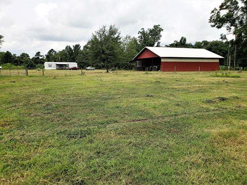 Seven Acres Farm : Saint George : Dorchester County : South Carolina
