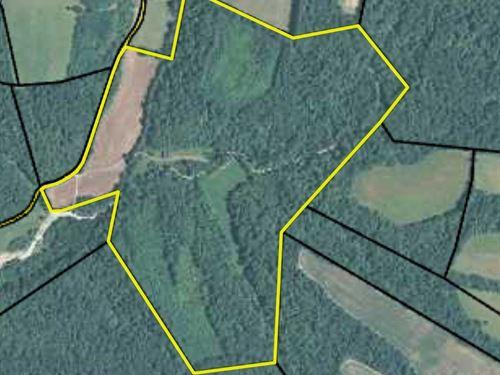 Farm Timber Creek Hunting Wildlife : Liberty : Casey County : Kentucky