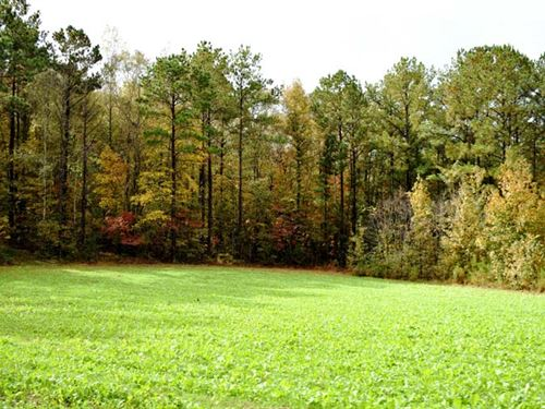 Cole Place Property : Nixburg : Coosa County : Alabama