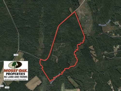 195 Acres of Hunting And Timber LA : Maple Hill : Pender County : North Carolina