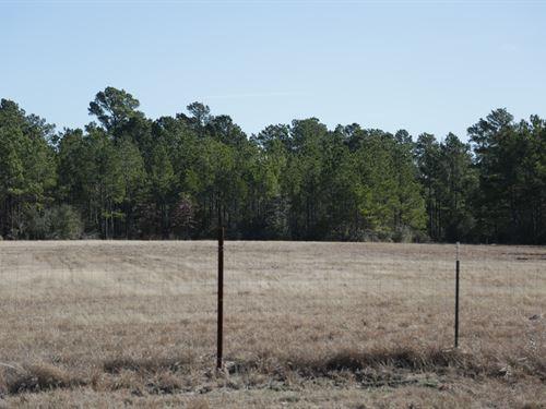 12 Ac S Fm 3179 : Huntsville : Walker County : Texas