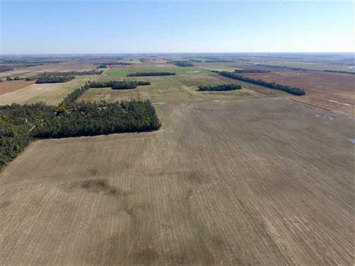 160 Acres of Tillable Land in : Saint John : Stafford County : Kansas